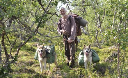 Wilderness hike with pack dogs