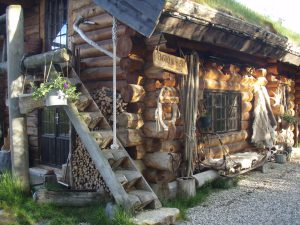Dog_house_outside