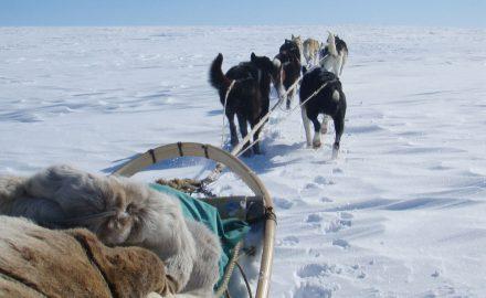 Round trip in Sami land 8 days